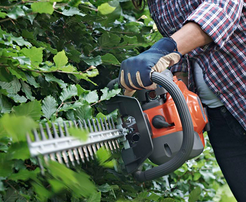 Hedge Trimmers & Saws